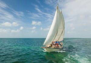 Key West, key west attraction, Explore Keywest Florida, things to do in Key west, Key West Bahamas Cruise, Cruise travel to Key West, Houses of Key West, places to visit at Key West,